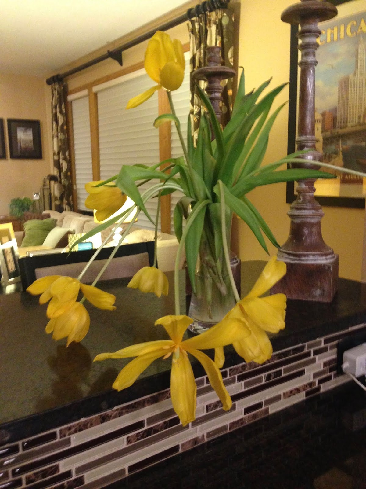 Become a Smarter Gardener in 2019: Why do bulb cut flowers ... on flower wallpaper, flower fences, flower arrangements, backyard designs, kitchen designs, flower background, flower arch, landscape designs, flower coloring pages, flower gardens for small yards, flower gardening, flower gardens with fountains, vintage wallpaper designs, flower gardens for florida, flower display, flower beds, swimming pool designs, patio designs, yard designs, flower desktop,