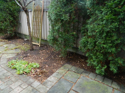 Oakwood Vaughan Toronto Backyard Fall Cleanup After by Paul Jung Gardening Services--a Toronto Gardening Services Company