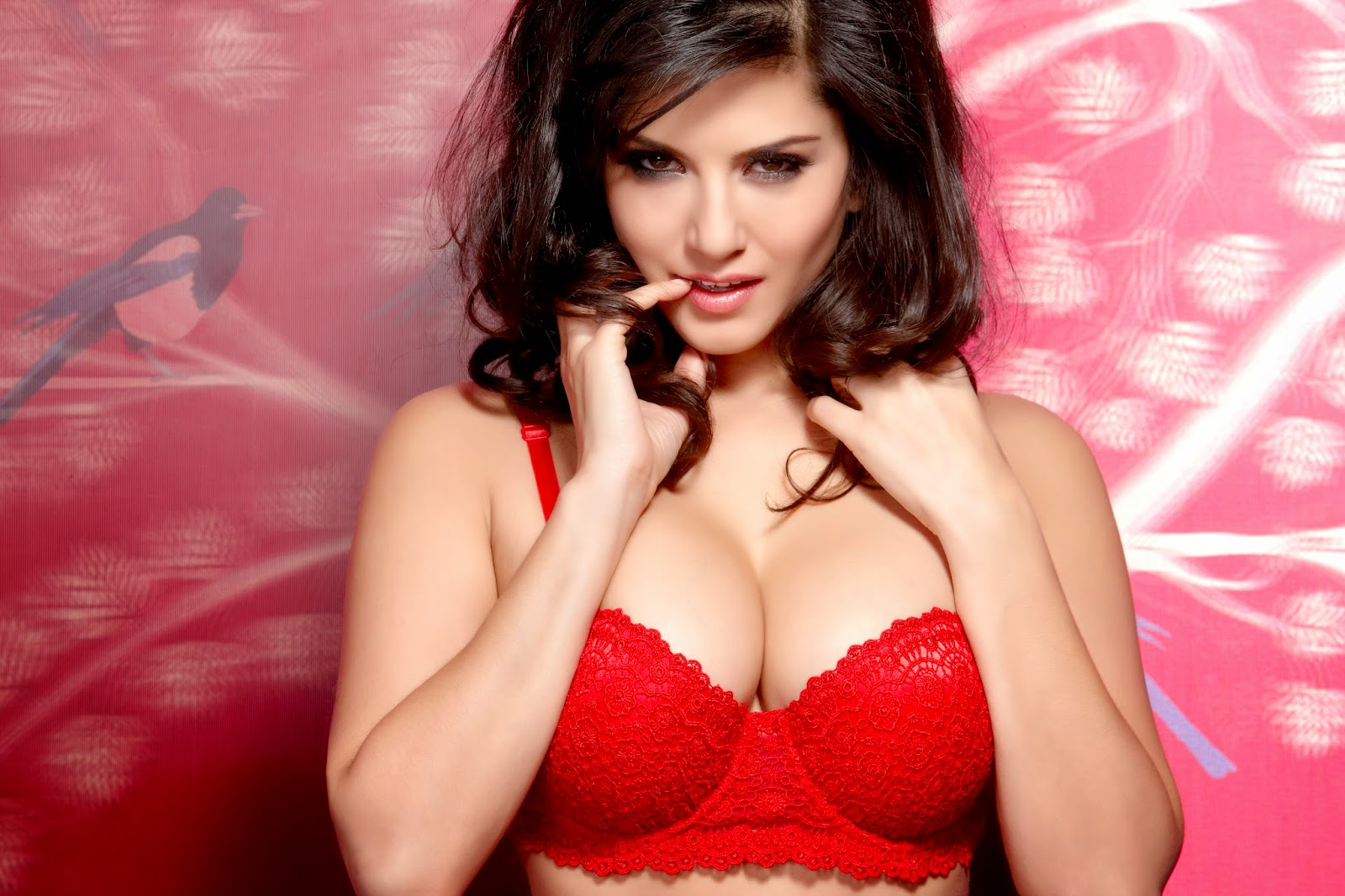 Wallpaper Zony Sunny Leone Full Hd Wallpapers-4607