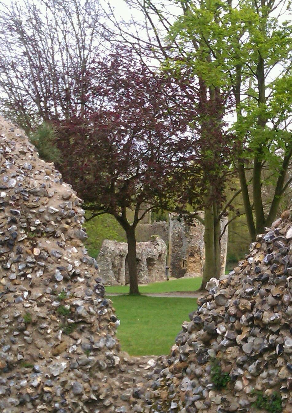 http://www.zazzle.co.uk/abbey_ruins_at_bury_st_edmunds_greeting_card-137957049782870285?rf=238977740256437049