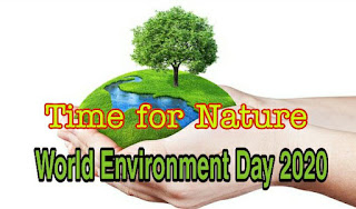 World Environment Day 2020 | World Environment Day Activities, Time for Nature