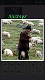 655 слов на пастбище стоит пастух вместе с овцами 20 уровень