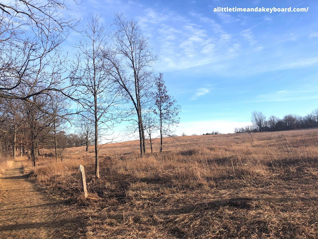 Woodlands run into grasslands at Hickory Grove Highlands in Cary, Illinois