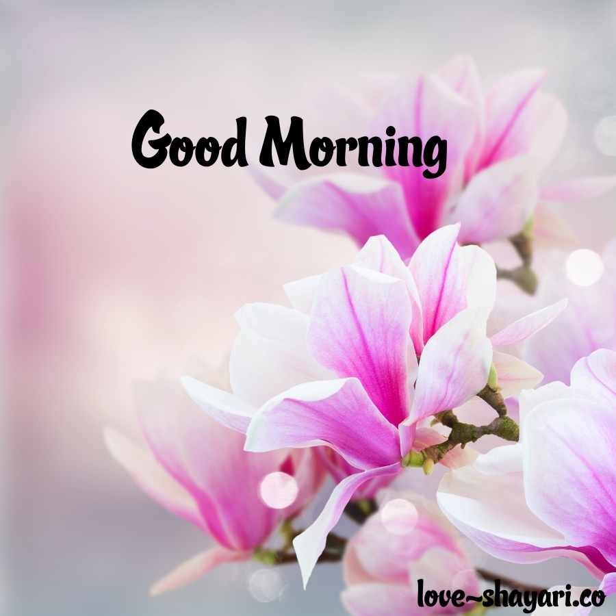 good morning images in flowers