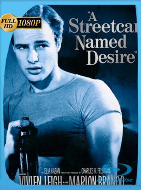 Un Tranvia Llamado Deseo [1951] HD [1080p] Castellano [GoogleDrive] SilvestreHD