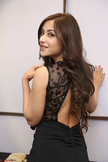 Angela Krislinzki in Transparent Black Gown at Rogue Movie Teaser Launch 1st March 2017 055.JPG