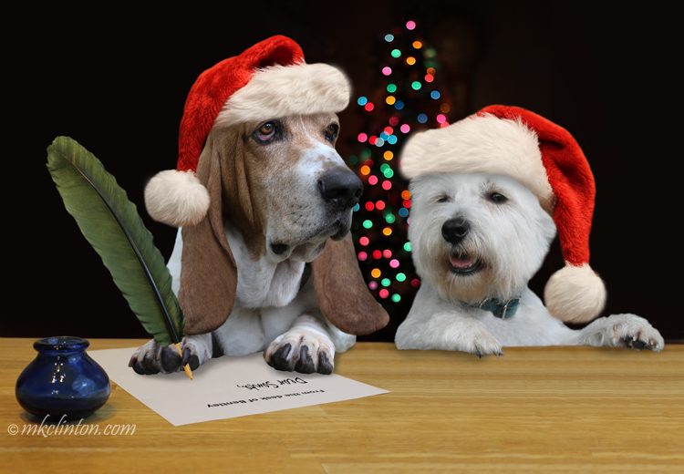 Bentley Basset Hound and Pierre Westie write a letter to Santa