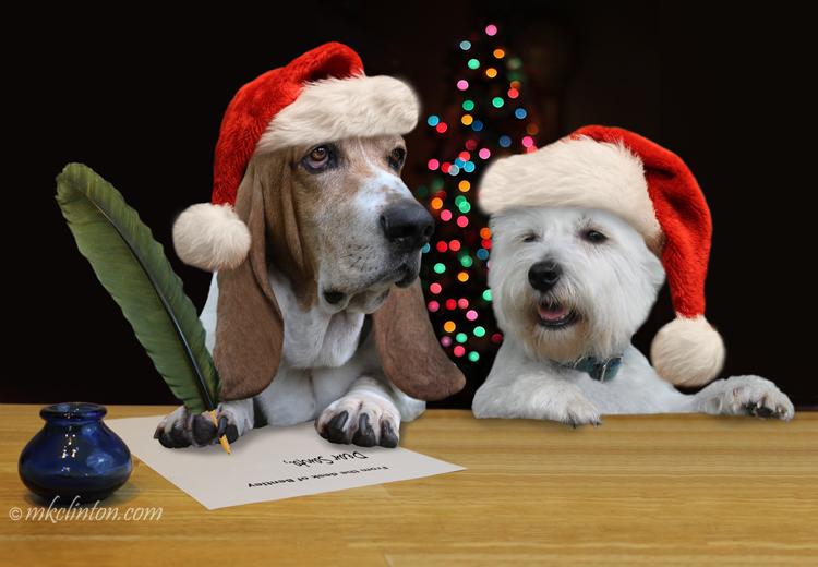 Bentley Basset Hound and Pierre Westie write a letter to Santa