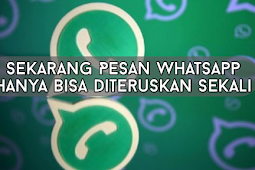 Sekarang Pesan Whatsapp Hanya Bisa Diteruskan (Forward) Sekali