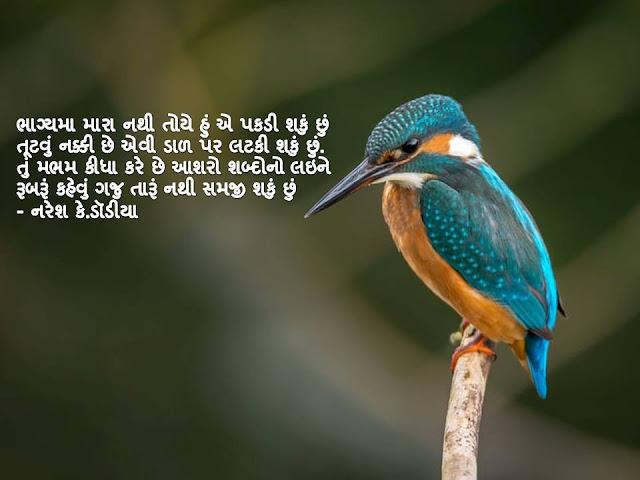 भाग्यमा मारा नथी तोये हुं ए पकडी शकुं छुं Gujarati Muktak By Naresh K. Dodia