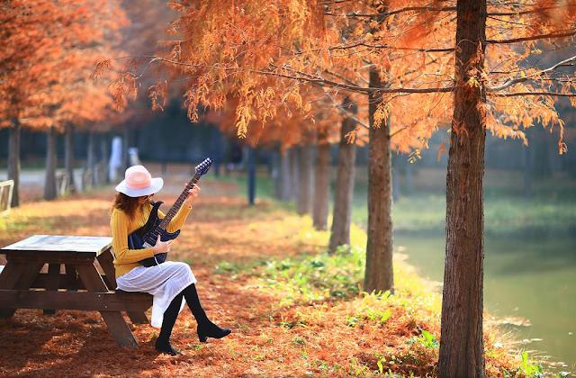 Sukienki na jesień i zimę