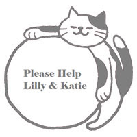 Please help Katie and Lily fight back from illness. . .