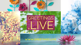Color full flower greeting Live Theme card