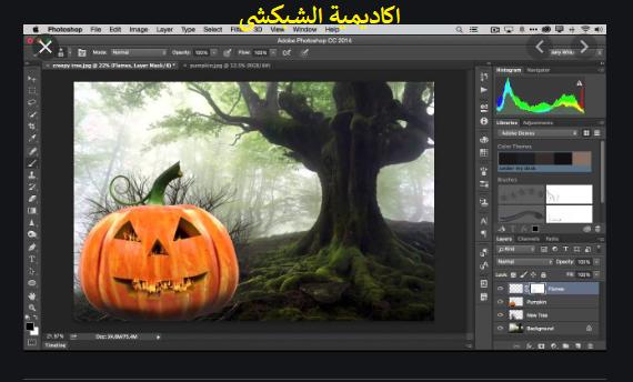 تحميل برنامج Adobe Photoshop CC Lite نسخة كاملة مفعلة مدى الحياة