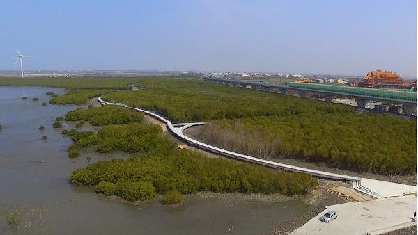 芳苑濕地紅樹林海空步道 暑假前可望開放帶動觀光