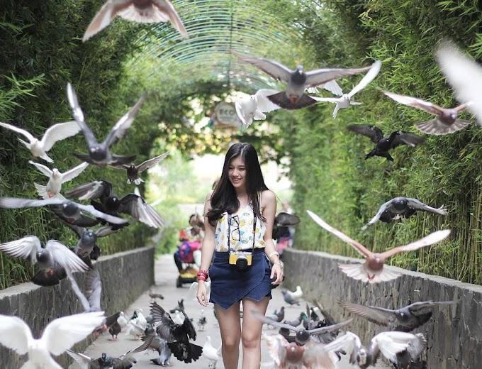 50 Destinasi Wisata di Malang yang Perlu Kamu Coba untuk Liburan Berikutnya