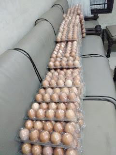 Telur Ayam 10btr