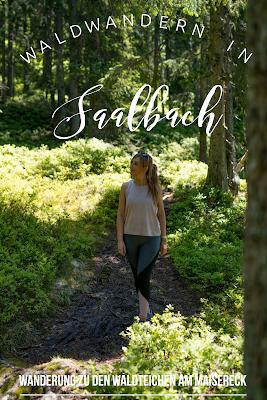 Waldwandern in Saalbach | Wanderung zu den Waldteichen am Maisereck | Saalbach - Maisalm - Wirtsalm - Waldteiche - Spielberghaus - Saalbach | Wandern-SalzburgerLand 22