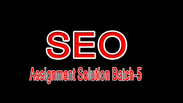 SEO Assignment solution batch 5 digiskills