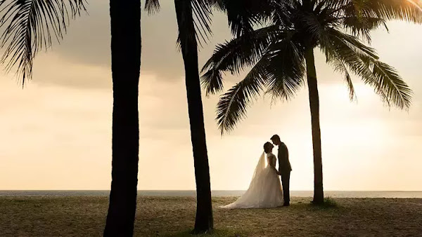 Wedding Quotes - Chapter 2