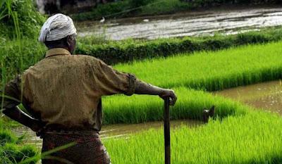 How to Apply Rythu Bheema Pathakam Scheme in Telangana