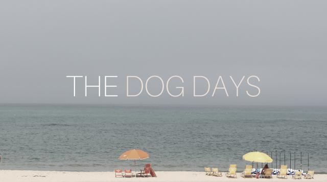 DOG DAYS OF SUMMER PLAYLIST