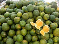 Mengenal Jenis Buah Jeruk Kalamansi yang Kaya Kandungan Nutrisi