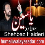 https://www.humaliwalyazadar.com/2018/09/shehbaz-haideri-nohay-2019.html