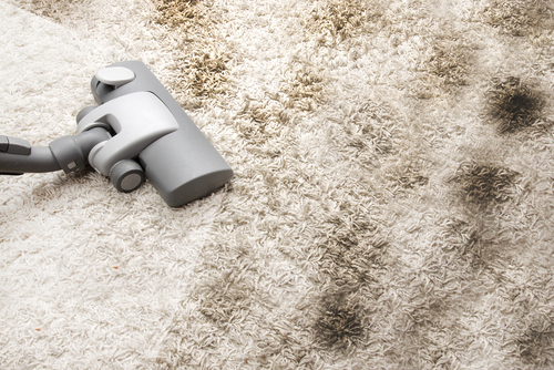 Singapore Carpet Cleaning: Can Dry Carpet Cleaning Remove ...