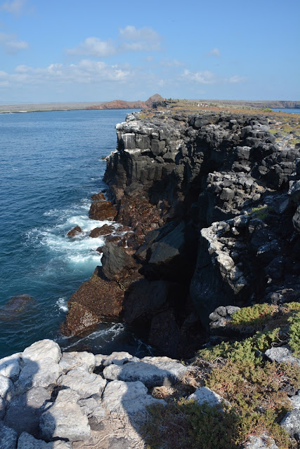 South Plaza Island cliffs