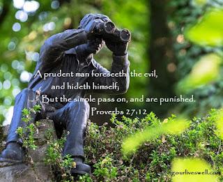 Proverbs 27:12