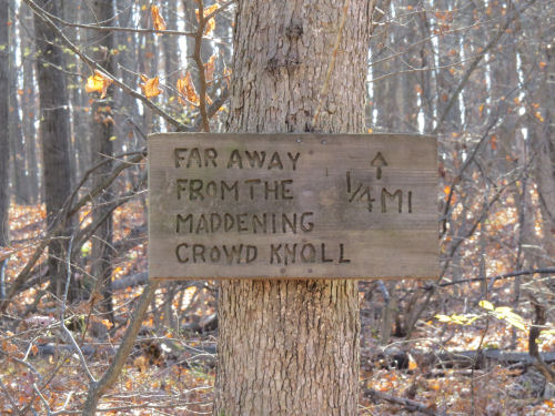 Far From the Maddening Crowd sign