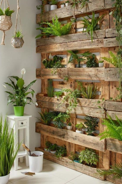 BEAUTIFUL INTERIOR PLANTS DESIGN FOR INSPIRATION