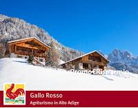 Logo Gallo Rosso : vinci gratis una vacanza in Alto Adige