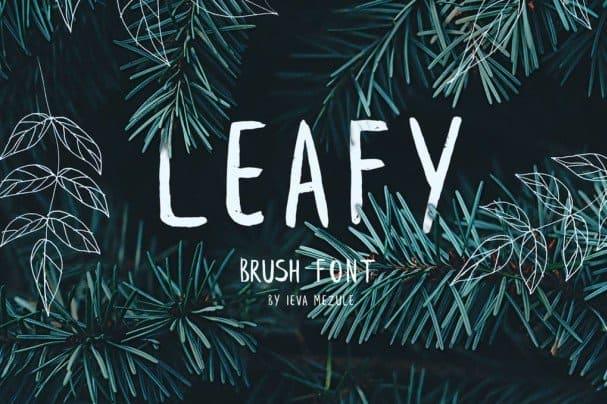 Leafy Brush font free download