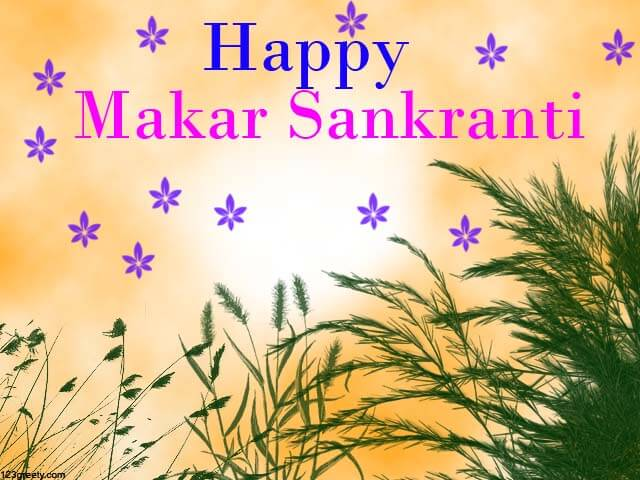 makar sankranti wallpapers 2018