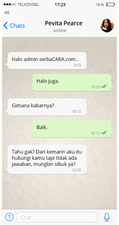 Percakapan Teks Palsu