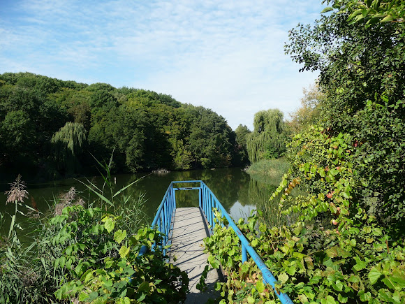 Киев. Верхний Китаевский пруд
