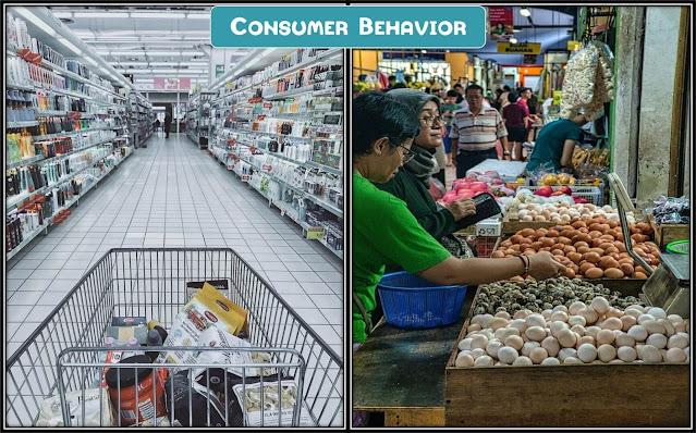 consumer behavior, consumer behavior meaning, maria piacentini, consumer behavior in marketing, marketing, consumer behavior examples, diffusion of innovations, learning and memory, innovation
