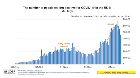 110121 UK Briefing Vaccine Delivery Plan positive cases UK