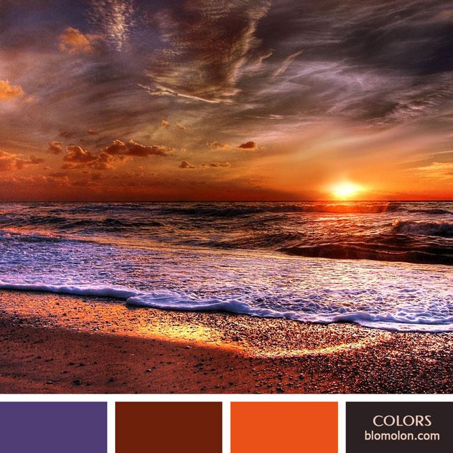 variedad_en_color_color_59