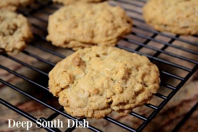 Soft and chewy oatmeal cookies with coconut and pecans.