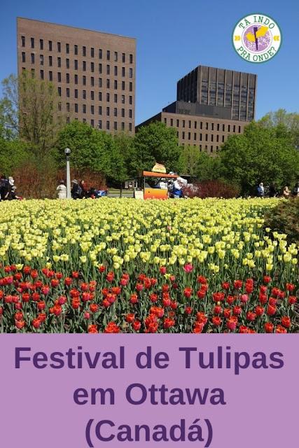 Festival de Tulipas em Ottawa (Canadá)!