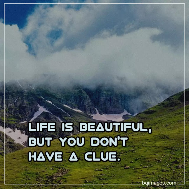 life is beautiful images free download