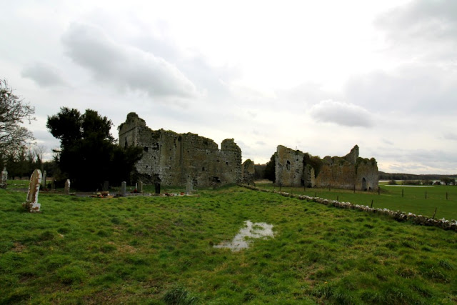 Ruins of Ballyboggan Abbey