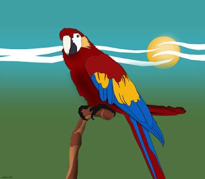 Vector art of parrot.