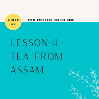 Lesson 4 | Tea from Assam Questions and Answers | NCERT English Solutions | SEBA | Assam