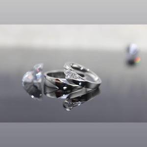 potret poto cincin berlian | KALIMANTAN BARAT