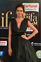 Esha Gupta in a Deep Neck Sleeveless Dark Green Gown at IIFA Utsavam Awards 2017     20.JPG