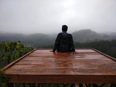 Harga Tiket Masuk dan Lokasi Hutan Pinus Kalilo Purworejo, Spot Foto yang Bagus